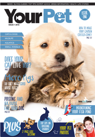 PP-01-YP-ISSUE-1-2016